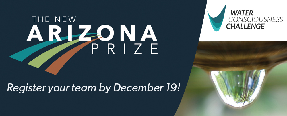 The New Arizona Prize