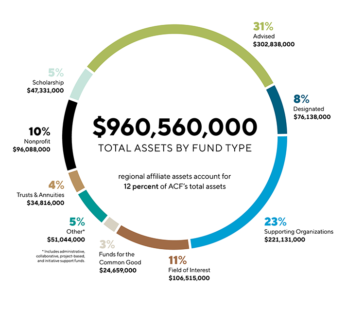 Total assets by fund type